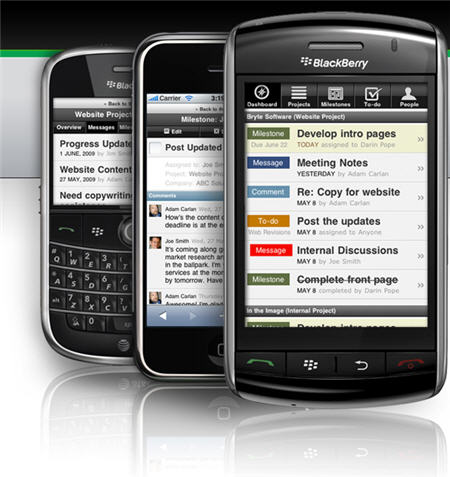 BlackBerry, top dog in marketshare